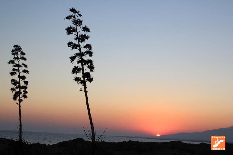 El sol se pone en la ciudad de Almería. Vista desde El Toyo