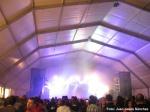 Rock Albox 2012