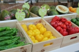 productos D'Fruits