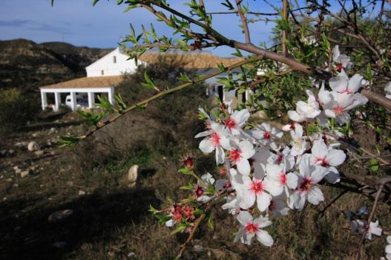 Foto Roberto F. García -espeleofoto.com entorno