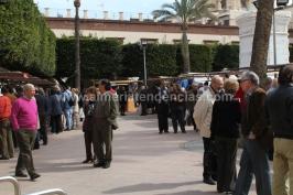 Feria Queso Almería - Plaza Vieja