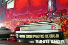 Libros en el estudio de Moli Moli