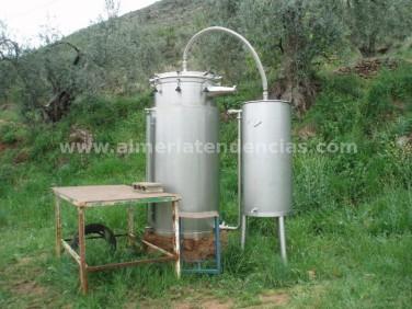 Destiladora de plantas en Bodega Cortijo El Cura