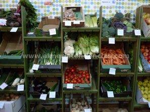 Semilla Verde - Tienda Ecológica 9